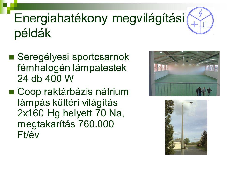 Energiahatékony megvilágítási példák Seregélyesi sportcsarnok fémhalogén lámpatestek 24 db 400 W Coop raktárbázis nátrium lámpás kültéri világítás 2x160 Hg helyett 70 Na, megtakarítás 760.000 Ft/év 13