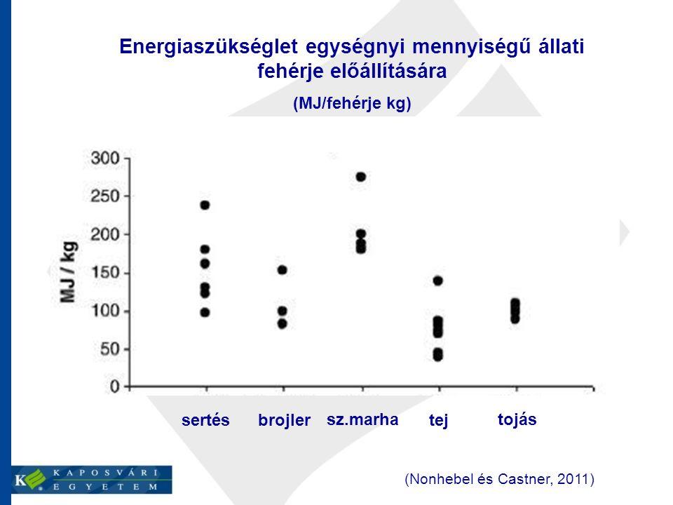Energiaszükséglet egységnyi mennyiségű állati fehérje előállítására (MJ/fehérje kg) sertés brojler sz.marha tej tojás (Nonhebel és Castner, 2011)