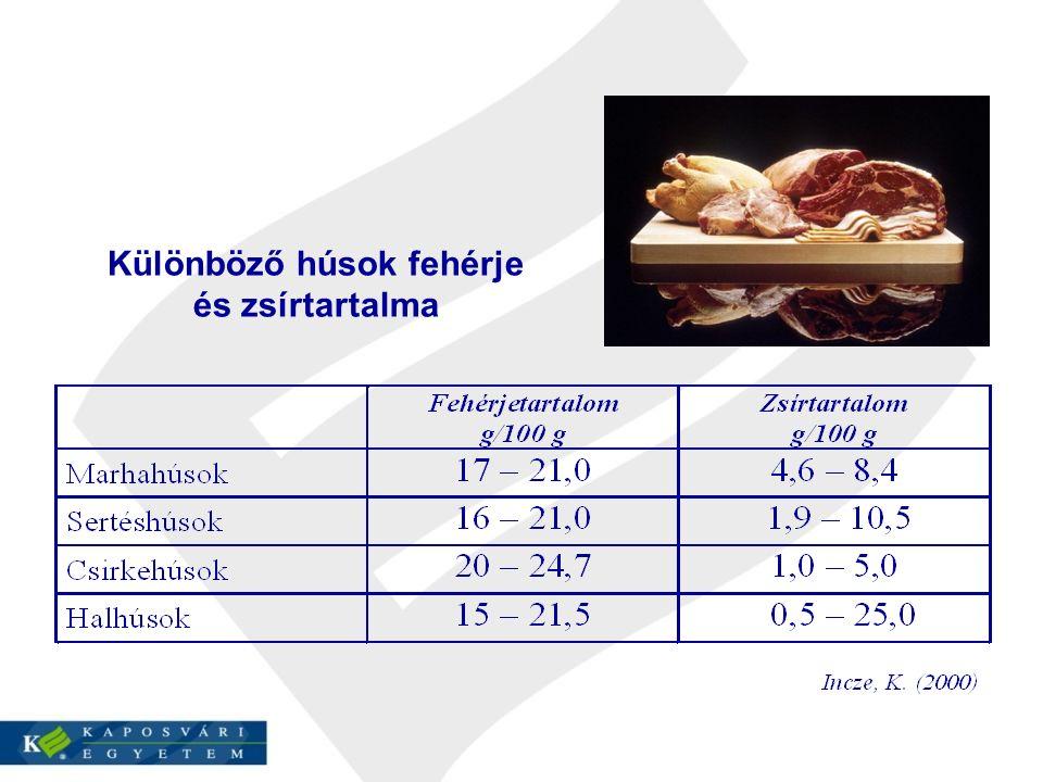 Különböző húsok fehérje és zsírtartalma
