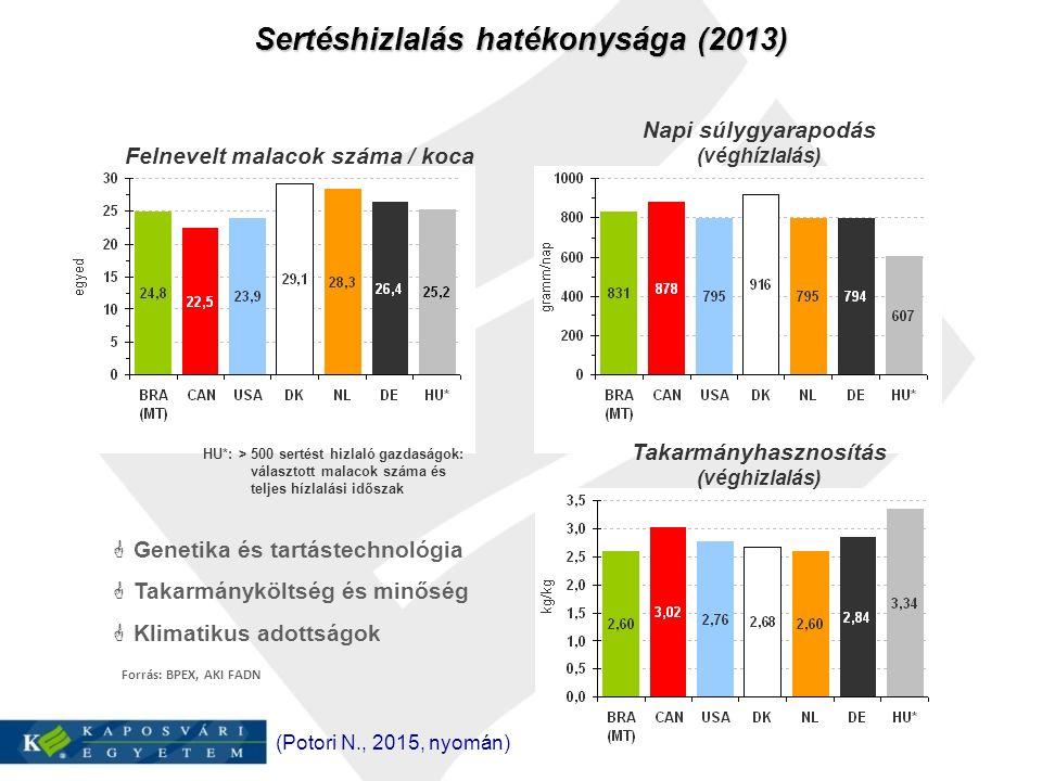 Forrás: BPEX, AKI FADN Sertéshizlalás hatékonysága (2013)  Genetika és tartástechnológia  Takarmányköltség és minőség  Klimatikus adottságok Felnevelt malacok száma / koca Napi súlygyarapodás (véghízlalás) Takarmányhasznosítás (véghizlalás) HU*: > 500 sertést hizlaló gazdaságok: választott malacok száma és teljes hízlalási időszak (Potori N., 2015, nyomán)