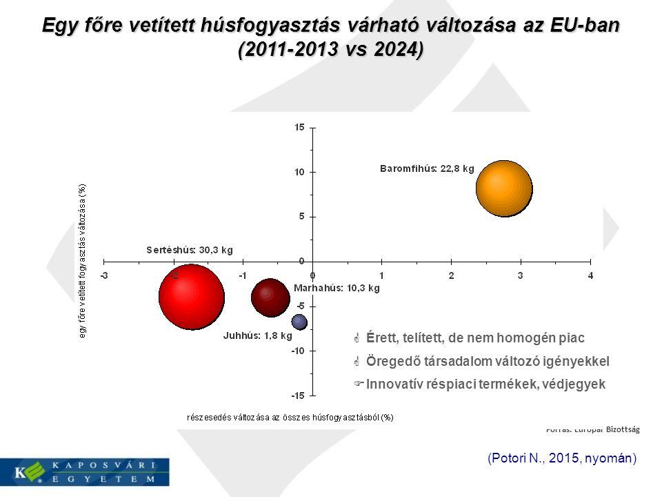 Forrás: Európai Bizottság Egy főre vetített húsfogyasztás várható változása az EU-ban (2011-2013 vs 2024) 2023 vs 2010-2012  Érett, telített, de nem homogén piac  Öregedő társadalom változó igényekkel  Innovatív réspiaci termékek, védjegyek (Potori N., 2015, nyomán)