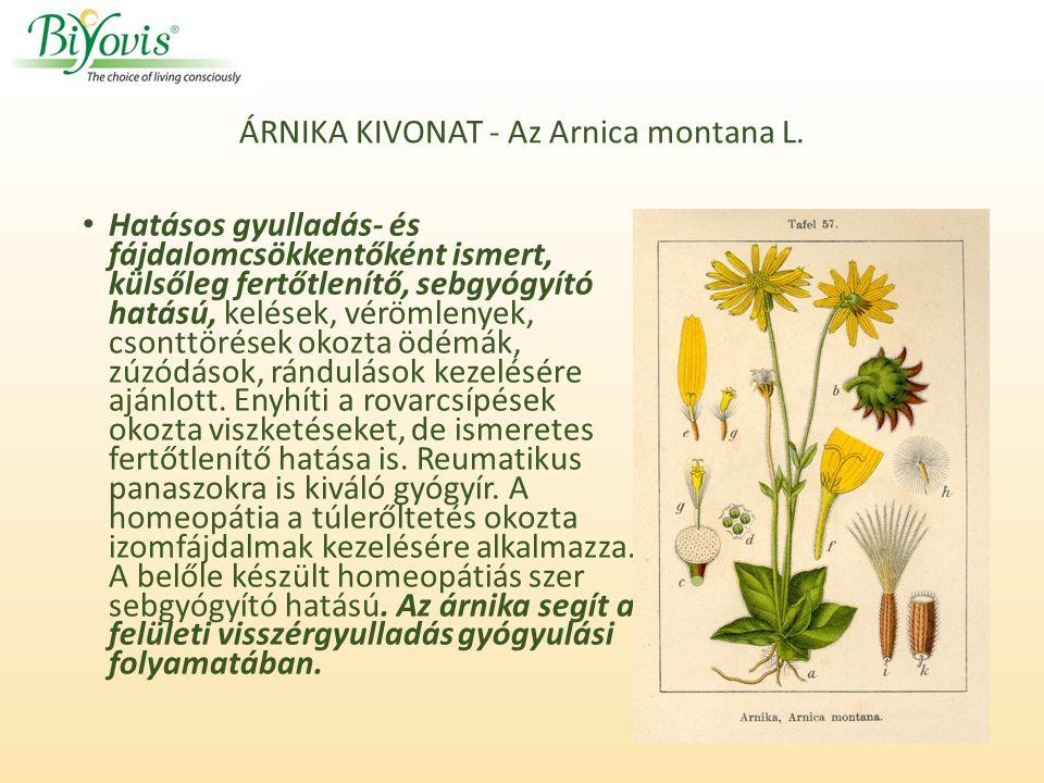 ÁRNIKA KIVONAT - Az Arnica montana L.