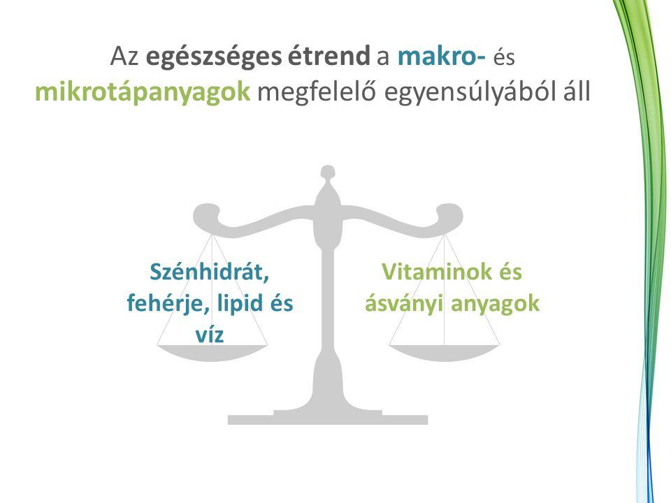 Az egészséges étrend a makro- és mikrotápanyagok megfelelő egyensúlyából áll Szénhidrát, fehérje, lipid és víz Vitaminok és ásványi anyagok