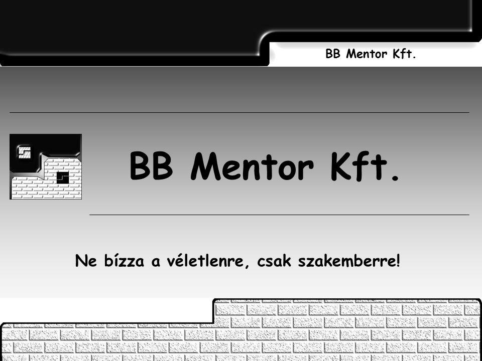 BB Mentor Kft. Ne bízza a véletlenre, csak szakemberre! BB Mentor Kft.