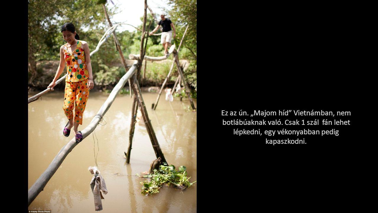 """Ez az ún.""""Majom híd Vietnámban, nem botlábúaknak való."""