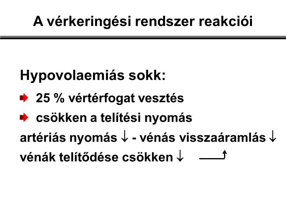 Hypovolaemiás sokk: 25 % vértérfogat vesztés csökken a telítési nyomás artériás nyomás  - vénás visszaáramlás  vénák telítődése csökken  A vérkeringési rendszer reakciói