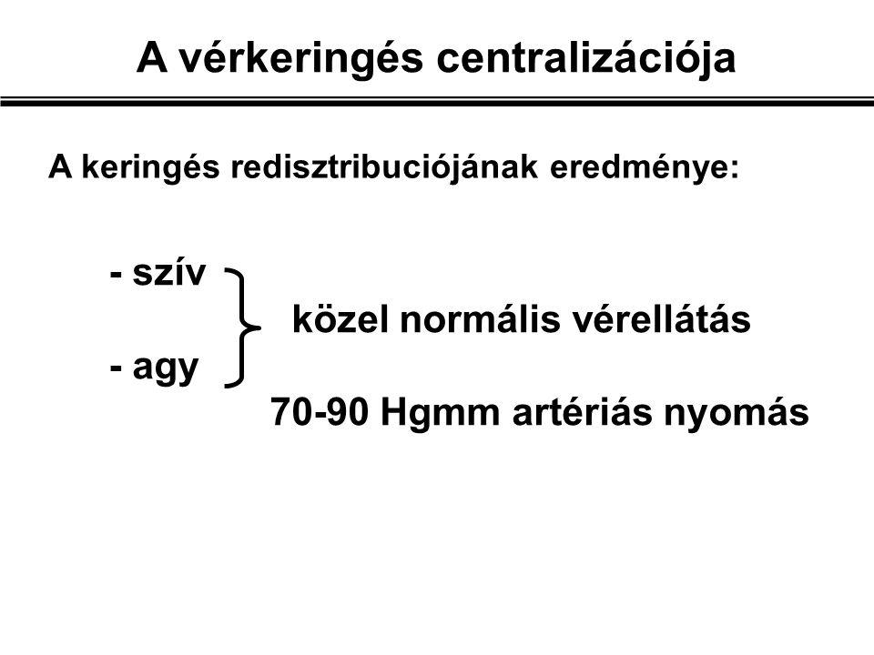 - szív közel normális vérellátás - agy 70-90 Hgmm artériás nyomás A vérkeringés centralizációja A keringés redisztribuciójának eredménye: