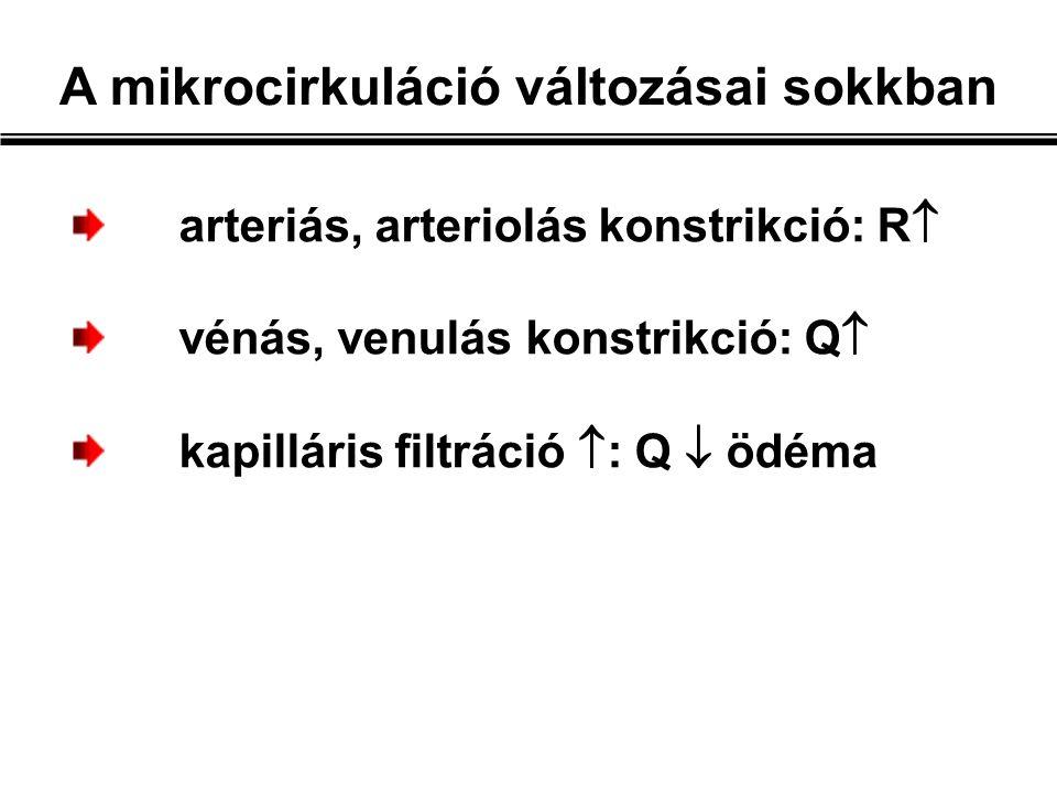 arteriás, arteriolás konstrikció: R  vénás, venulás konstrikció: Q  kapilláris filtráció  : Q  ödéma A mikrocirkuláció változásai sokkban