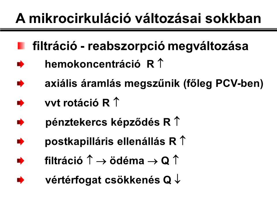 filtráció - reabszorpció megváltozása hemokoncentráció R  axiális áramlás megszűnik (főleg PCV-ben) vvt rotáció R  pénztekercs képződés R  postkapilláris ellenállás R  filtráció   ödéma  Q  vértérfogat csökkenés Q 