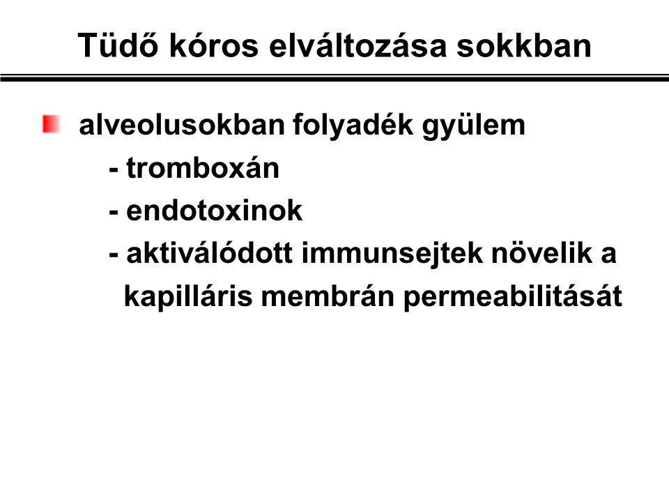 alveolusokban folyadék gyülem - tromboxán - endotoxinok - aktiválódott immunsejtek növelik a kapilláris membrán permeabilitását