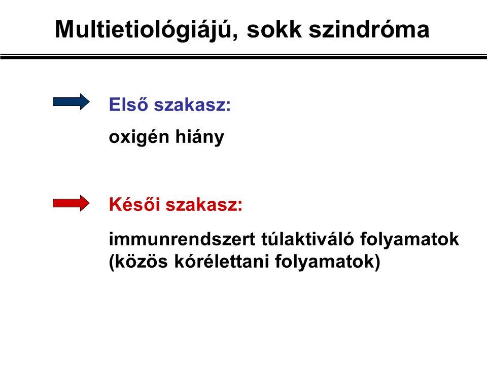Első szakasz: oxigén hiány Késői szakasz: immunrendszert túlaktiváló folyamatok (közös kórélettani folyamatok) Multietiológiájú, sokk szindróma