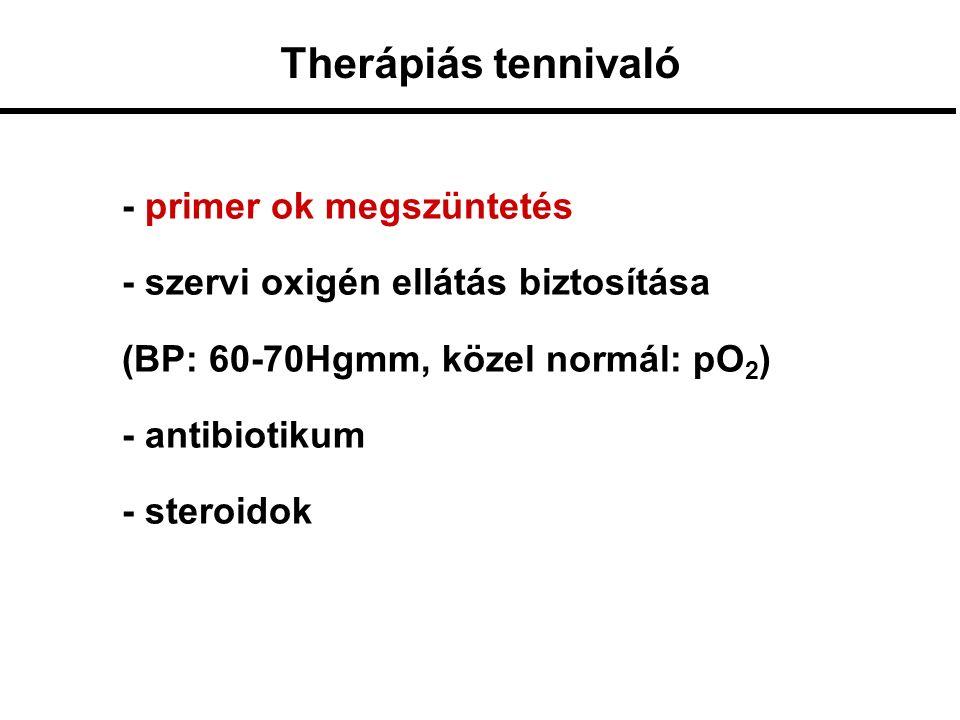 - primer ok megszüntetés - szervi oxigén ellátás biztosítása (BP: 60-70Hgmm, közel normál: pO 2 ) - antibiotikum - steroidok Therápiás tennivaló