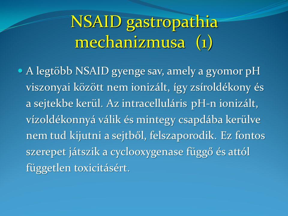 A különböző NSAID készítmények mucosa károsító hatása nem kizárólagosan a prostaglandin szintézis gátlásán (COX gátlás) keresztül valósul meg.