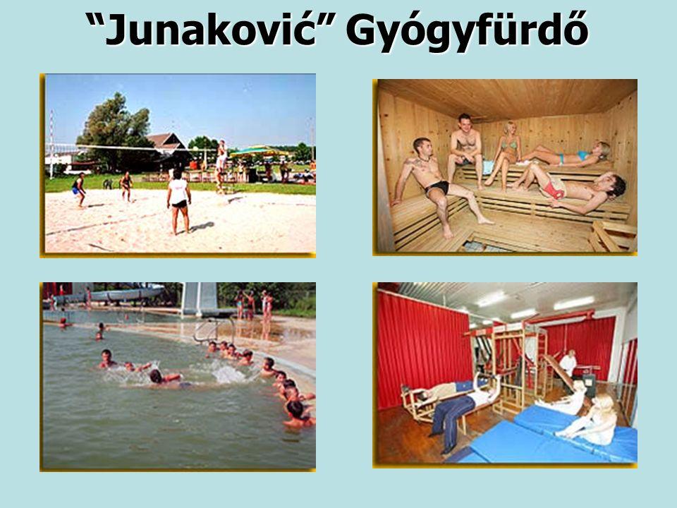 Junaković Gyógyfürdő