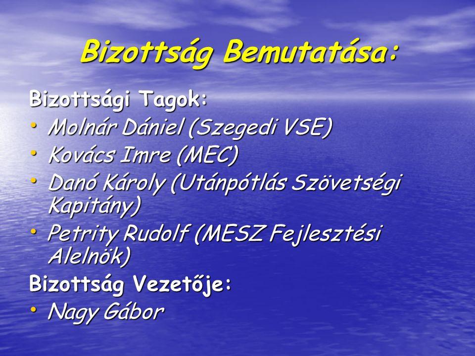 Bizottság Bemutatása: Bizottsági Tagok: Molnár Dániel (Szegedi VSE) Molnár Dániel (Szegedi VSE) Kovács Imre (MEC) Kovács Imre (MEC) Danó Károly (Utánpótlás Szövetségi Kapitány) Danó Károly (Utánpótlás Szövetségi Kapitány) Petrity Rudolf (MESZ Fejlesztési Alelnök) Petrity Rudolf (MESZ Fejlesztési Alelnök) Bizottság Vezetője: Nagy Gábor Nagy Gábor