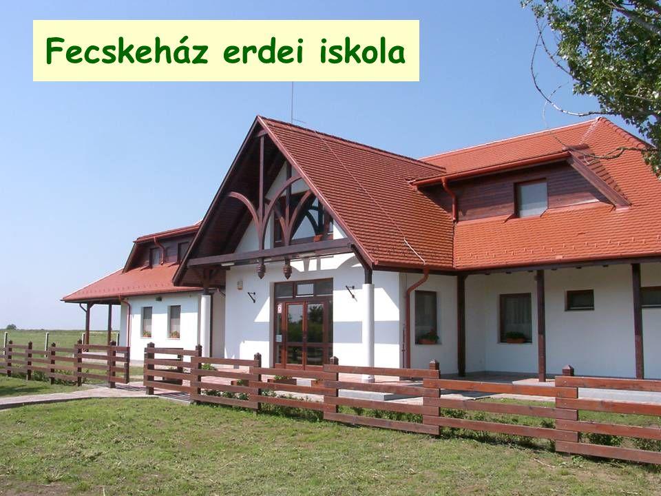 Fecskeház erdei iskola