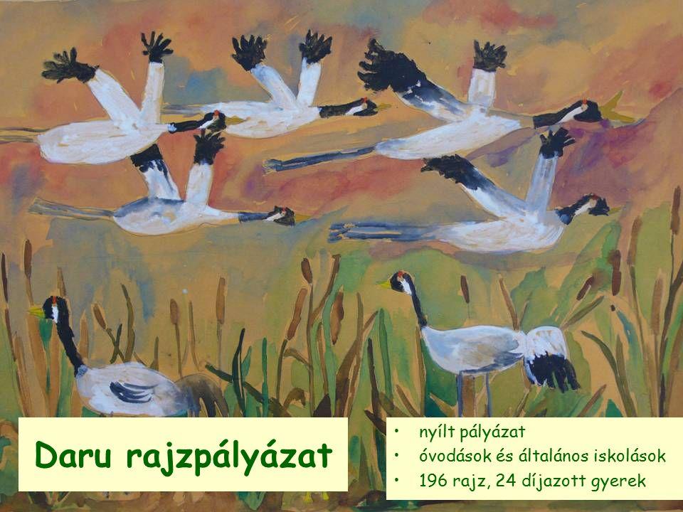 Daru rajzpályázat nyílt pályázat óvodások és általános iskolások 196 rajz, 24 díjazott gyerek