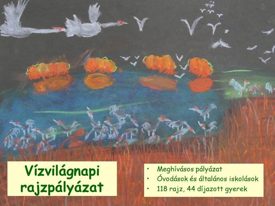 Vízvilágnapi rajzpályázat Meghívásos pályázat Óvodások és általános iskolások 118 rajz, 44 díjazott gyerek