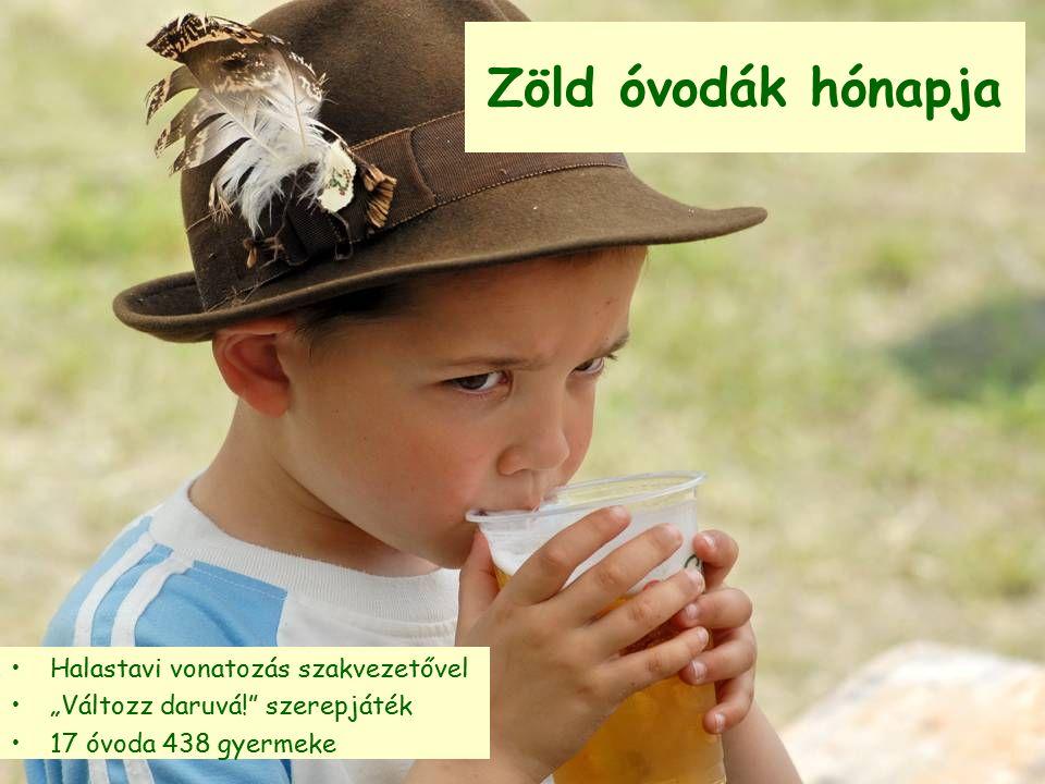 """Zöld óvodák hónapja Halastavi vonatozás szakvezetővel """"Változz daruvá!"""" szerepjáték 17 óvoda 438 gyermeke"""