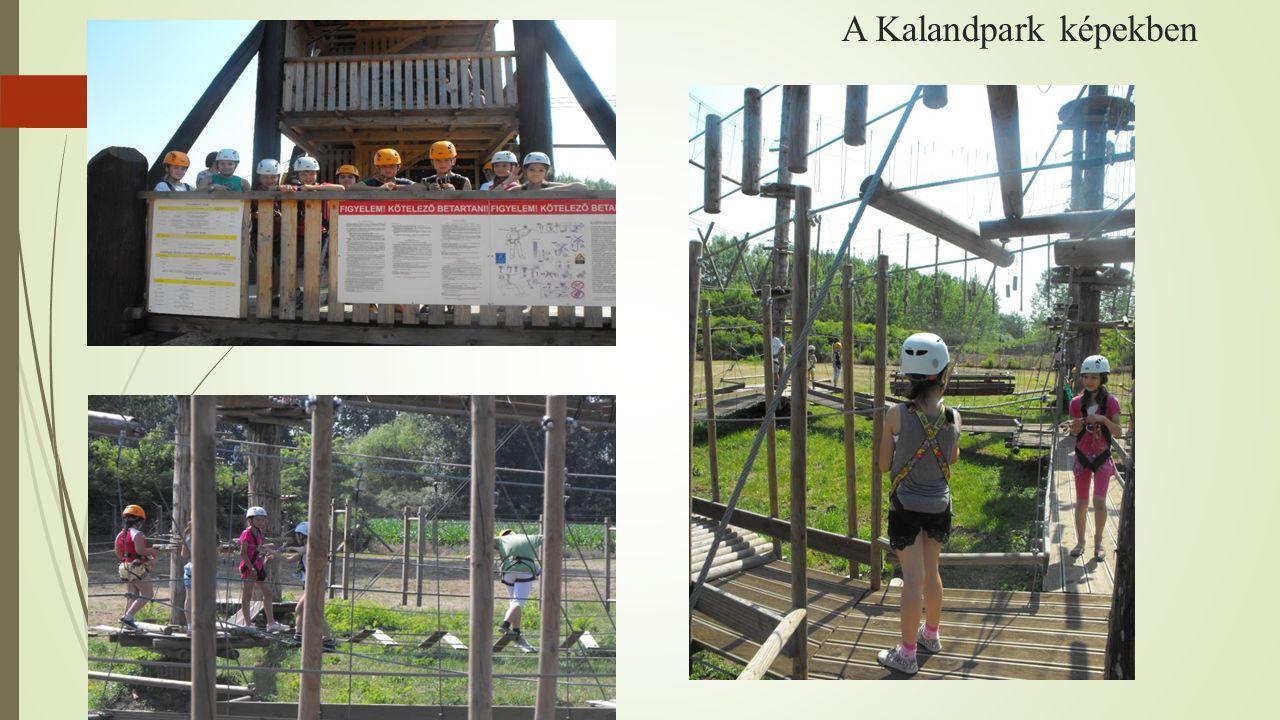 A Kalandpark képekben