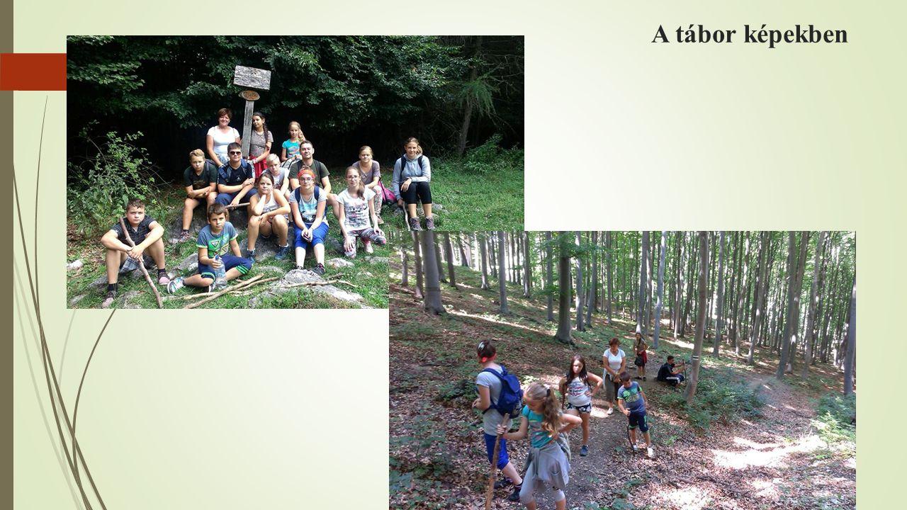 A tábor képekben