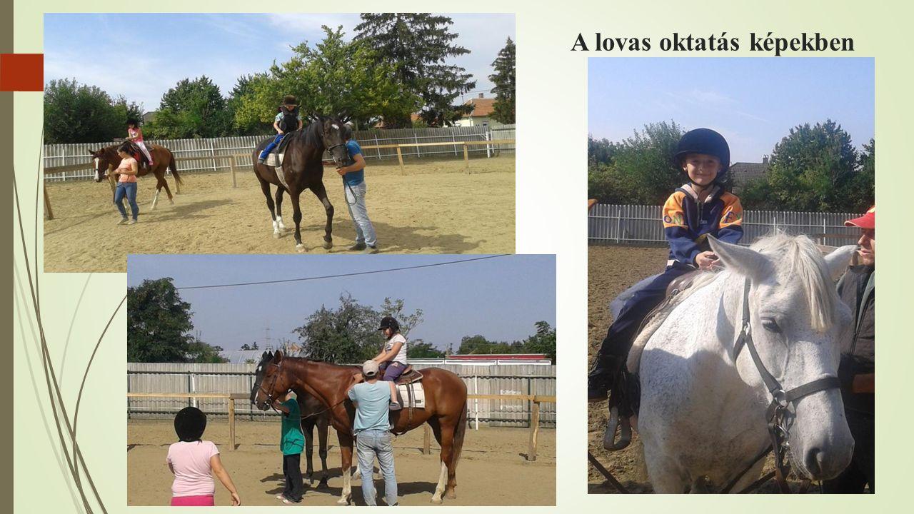 A lovas oktatás képekben