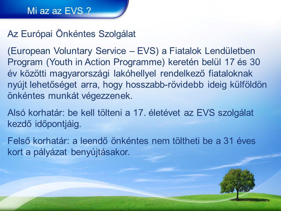Mi az az EVS .
