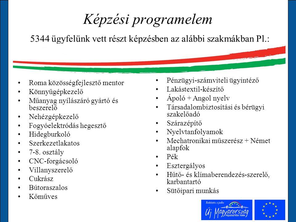Támogatási programelemek A program során összesen 5491 főnek nyílt lehetősége a támogatott elhelyezkedésre.