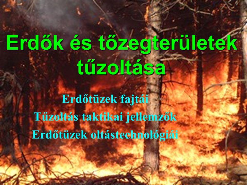 Erdők és tőzegterületek tűzoltása Erdőtüzek fajtái Tűzoltás taktikai jellemzők Erdőtüzek oltástechnológiái
