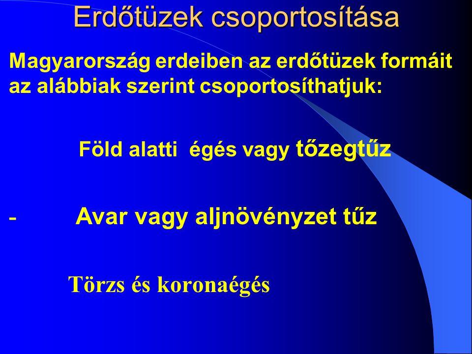 Erdőtüzek csoportosítása Magyarország erdeiben az erdőtüzek formáit az alábbiak szerint csoportosíthatjuk: 1.