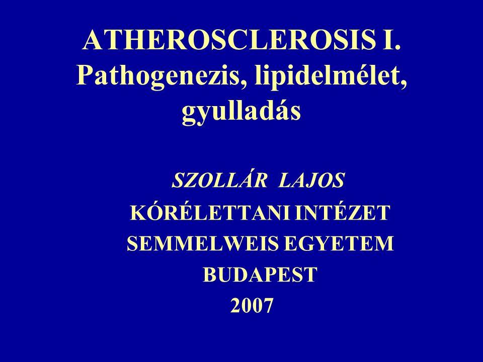 """Az artériafal kétféle szerkezeti változása:  Korral összefügő falvastagodás, """"keményedés és a """"merevség (stiffness) növekedése: ARTERIOSCLEROSIS  Atherosclerotikus plaque képződés: ATHEROSCLEROSIS P."""