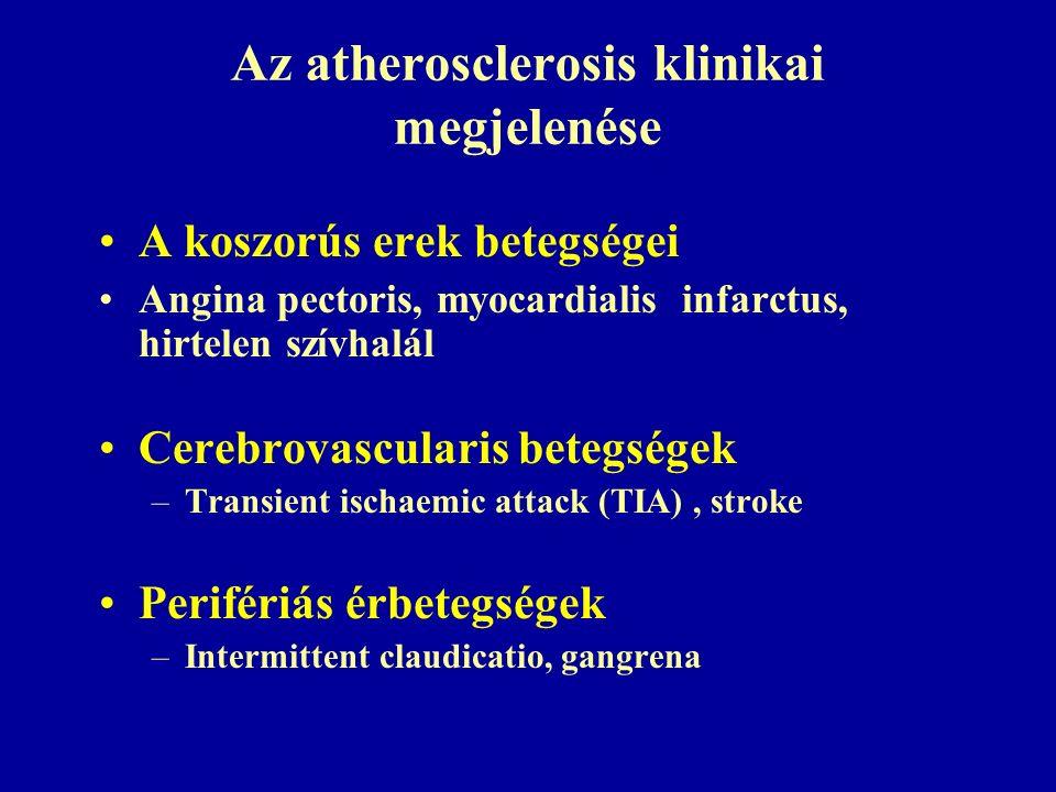 Az atherosclerosis klinikai megjelenése A koszorús erek betegségei Angina pectoris, myocardialis infarctus, hirtelen szívhalál Cerebrovascularis betegségek –Transient ischaemic attack (TIA), stroke Perifériás érbetegségek –Intermittent claudicatio, gangrena