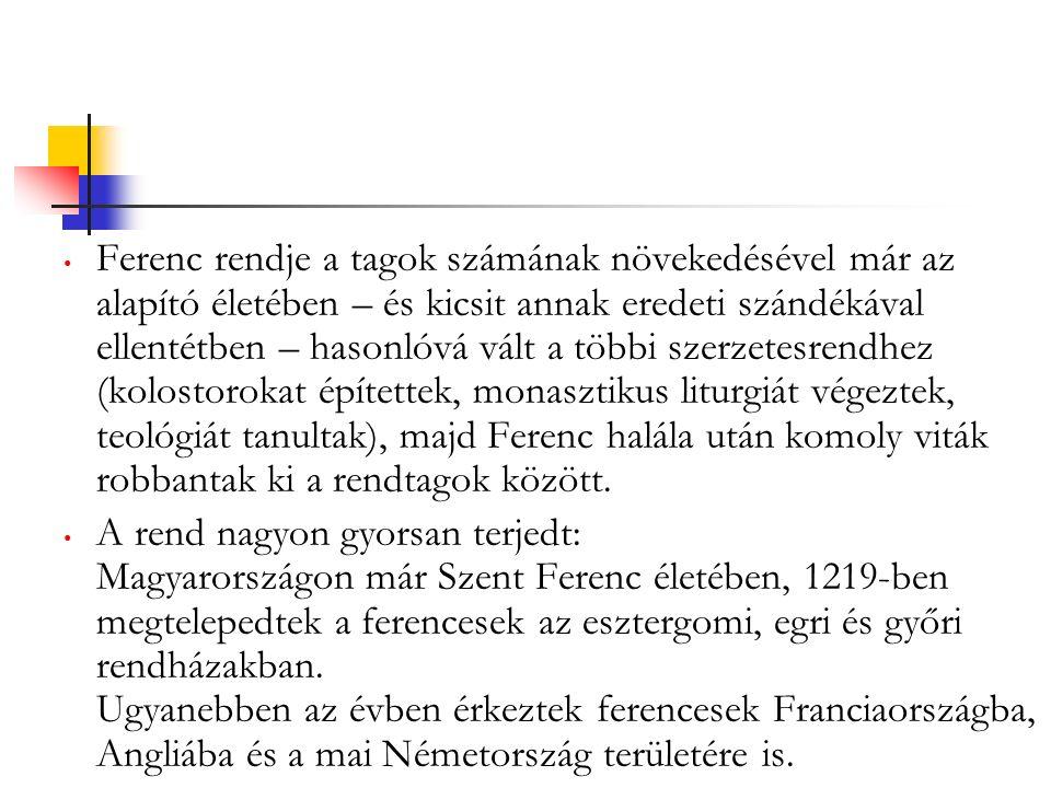 Ferenc rendje a tagok számának növekedésével már az alapító életében – és kicsit annak eredeti szándékával ellentétben – hasonlóvá vált a többi szerzetesrendhez (kolostorokat építettek, monasztikus liturgiát végeztek, teológiát tanultak), majd Ferenc halála után komoly viták robbantak ki a rendtagok között.