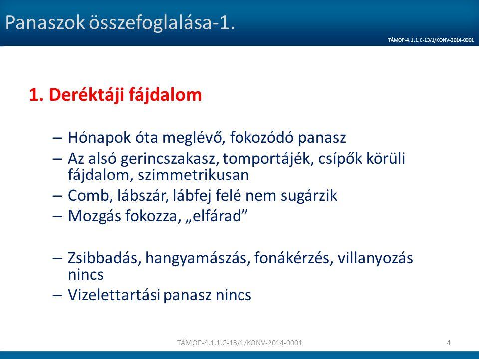 Szakértői videó Dr. Sebők Ágnes TÁMOP-4.1.1.C-13/1/KONV-2014-000135