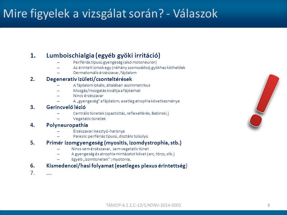Statust bemutató video TÁMOP-4.1.1.C-13/1/KONV-2014-00019