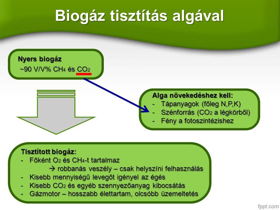 Biogáz ElőállításElőállítás Szerves anyagok bomlásakor keletkezik, ha oxigén nincs jelenSzerves anyagok bomlásakor keletkezik, ha oxigén nincs jelen Hulladékgazdálkodásban, szennyvíztisztításHulladékgazdálkodásban, szennyvíztisztítás Felhasználás (+hatákonyság) :Felhasználás (+hatákonyság) : Égetés – ÜHH csökkentésÉgetés – ÜHH csökkentés Áramfejlesztés(~40%)Áramfejlesztés(~40%) Távfűtéssel kombinált (~90%)Távfűtéssel kombinált (~90%) Tisztítás - üzemanyagkéntTisztítás - üzemanyagként KomponensV/V % Metán 35-65 Szén-dioxid 15-50 Nitrogén 1-10 Oxigén 0-5 Hidrogén 0-3 Kén 0-0,5 Összetétele:Összetétele:
