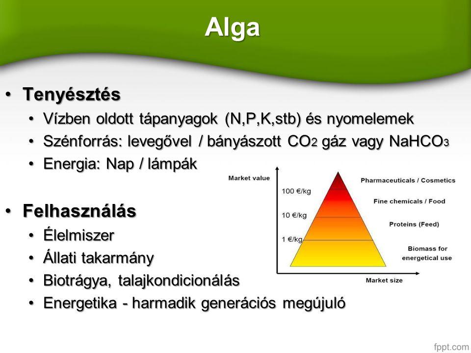 Alga TenyésztésTenyésztés Vízben oldott tápanyagok (N,P,K,stb) és nyomelemekVízben oldott tápanyagok (N,P,K,stb) és nyomelemek Szénforrás: levegővel / bányászott CO 2 gáz vagy NaHCO 3Szénforrás: levegővel / bányászott CO 2 gáz vagy NaHCO 3 Energia: Nap / lámpákEnergia: Nap / lámpák FelhasználásFelhasználás ÉlelmiszerÉlelmiszer Állati takarmányÁllati takarmány Biotrágya, talajkondicionálásBiotrágya, talajkondicionálás Energetika - harmadik generációs megújulóEnergetika - harmadik generációs megújuló