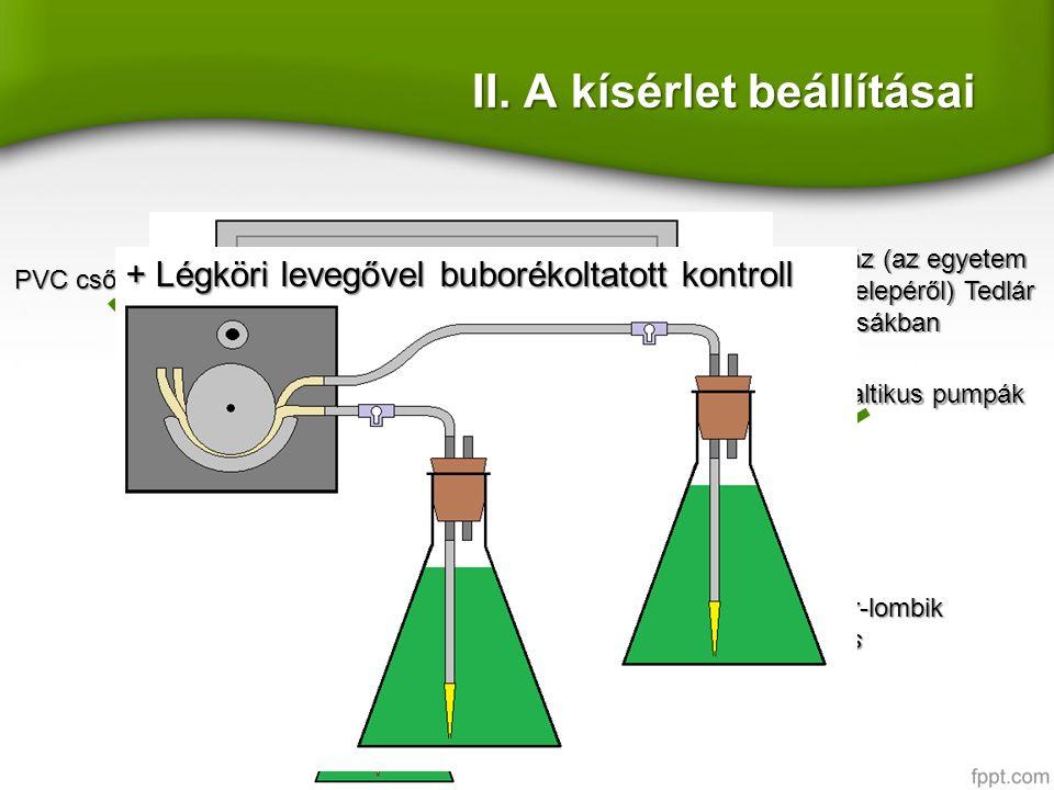 2 L biogáz (az egyetem kísérleti telepéről) Tedlár zsákban II.