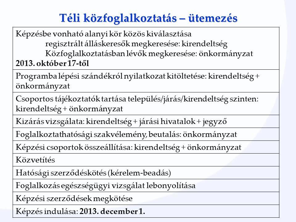 Téli közfoglalkoztatás – ütemezés Képzésbe vonható alanyi kör közös kiválasztása regisztrált álláskeresők megkeresése: kirendeltség Közfoglalkoztatásban lévők megkeresése: önkormányzat 2013.