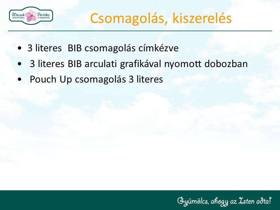 Csomagolás, kiszerelés 3 literes BIB csomagolás címkézve 3 literes BIB arculati grafikával nyomott dobozban Pouch Up csomagolás 3 literes