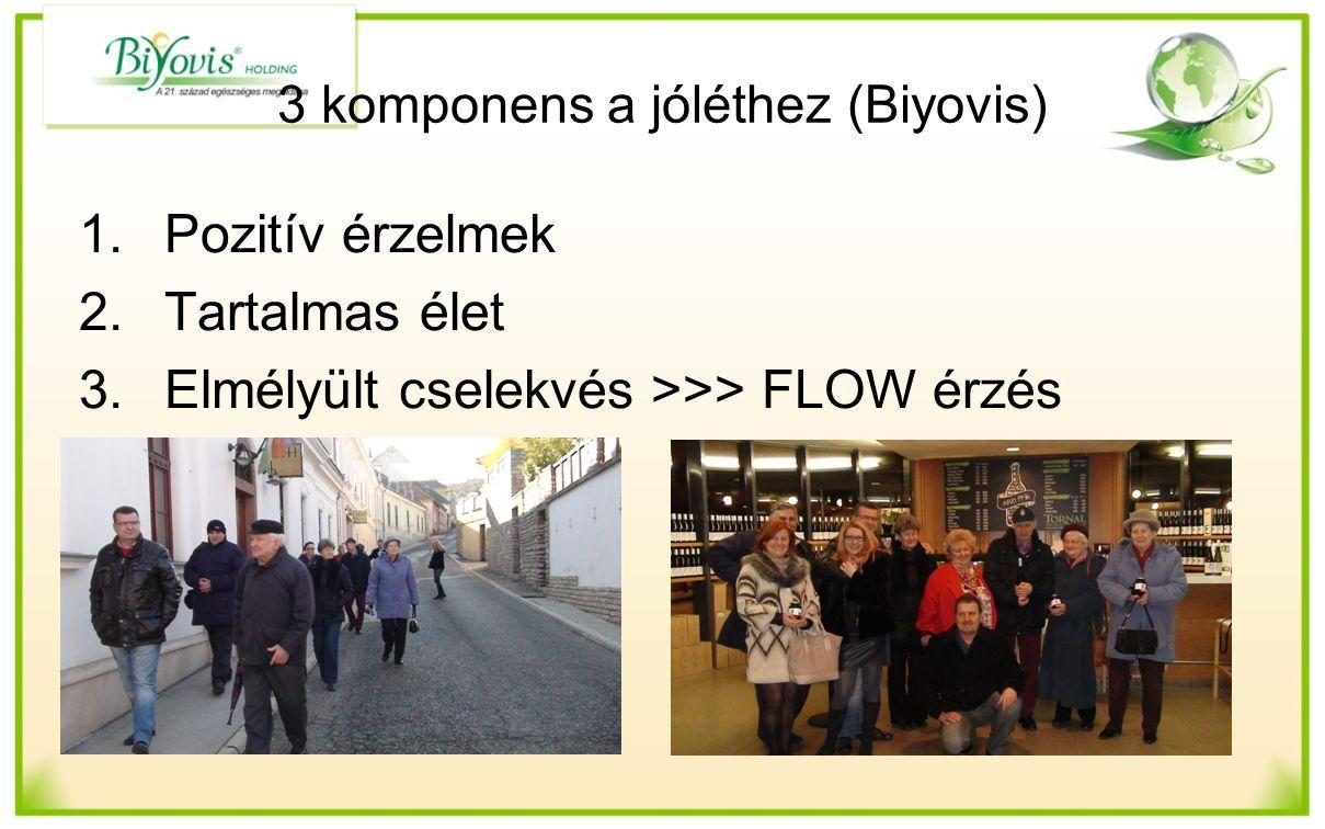3 komponens a jóléthez (Biyovis) 1.Pozitív érzelmek 2.Tartalmas élet 3.Elmélyült cselekvés >>> FLOW érzés
