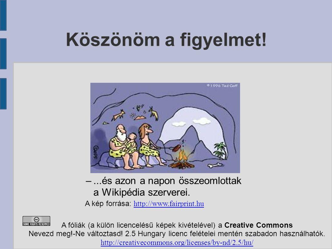 –...és azon a napon összeomlottak a Wikipédia szerverei.
