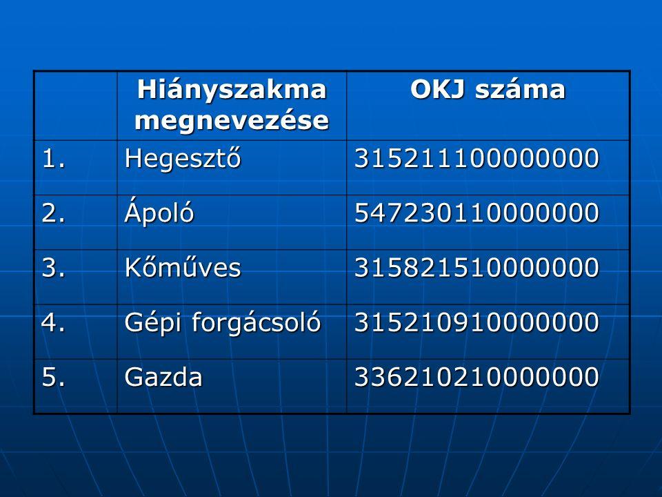 Hiányszakma megnevezése OKJ száma 1.Hegesztő315211100000000 2.Ápoló547230110000000 3.Kőműves315821510000000 4.
