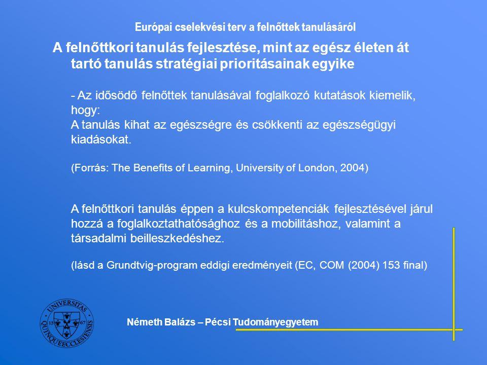 Európai cselekvési terv a felnőttek tanulásáról Az egész életen át tartó tanulás kulcskompetenciái - Az anyanyelven folytatott kommunikáció; - Az idegen nyelveken folytatott kommunikáció; - Matematikai kompetencia és alapvető természettudományi és műszaki ismeretek; - Digitális kompetencia; - Tanulási kompetenciák; - Interperszonális, interkulturális és állampolgári kompetenciák; - Vállalkozói kompetencia; - Kulturális kifejezőkészség; (Forrás: EC, COM (2005) 548 final) Az európai uniós oktatási és képzési programok 2007-2013 között az egész életen át tartó tanulás integrált rendszerében jelennek meg.