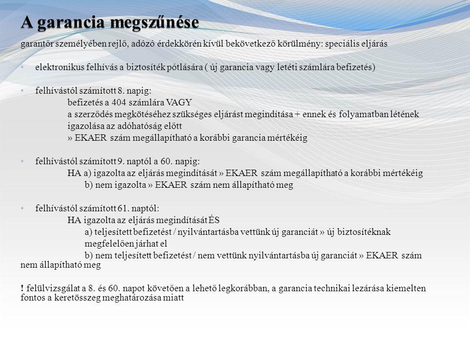 garantőr személyében rejlő, adózó érdekkörén kívül bekövetkező körülmény: speciális eljárás elektronikus felhívás a biztosíték pótlására ( új garancia