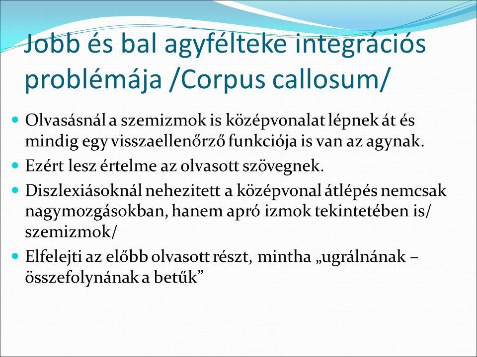 Jobb és bal agyfélteke integrációs problémája /Corpus callosum/ Olvasásnál a szemizmok is középvonalat lépnek át és mindig egy visszaellenőrző funkciója is van az agynak.