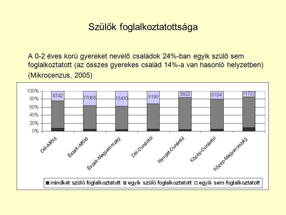 Szülők foglalkoztatottsága A 0-2 éves korú gyereket nevelő családok 24%-ban egyik szülő sem foglalkoztatott (az összes gyerekes család 14%-a van hasonló helyzetben) (Mikrocenzus, 2005)