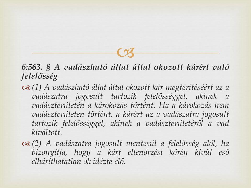  6:563. § A vadászható állat által okozott kárért való felelősség  (1) A vadászható állat által okozott kár megtérítéséért az a vadászatra jogosult