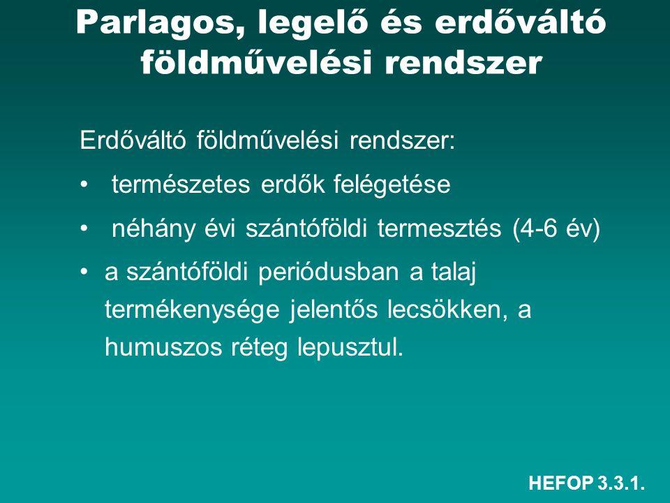 HEFOP 3.3.1. Parlagos, legelő és erdőváltó földművelési rendszer Erdőváltó földművelési rendszer: természetes erdők felégetése néhány évi szántóföldi