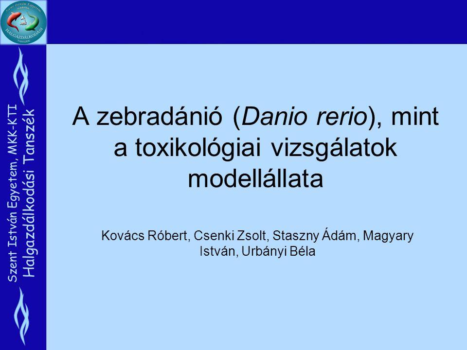 A zebradánió (Danio rerio), mint a toxikológiai vizsgálatok modellállata Kovács Róbert, Csenki Zsolt, Staszny Ádám, Magyary István, Urbányi Béla